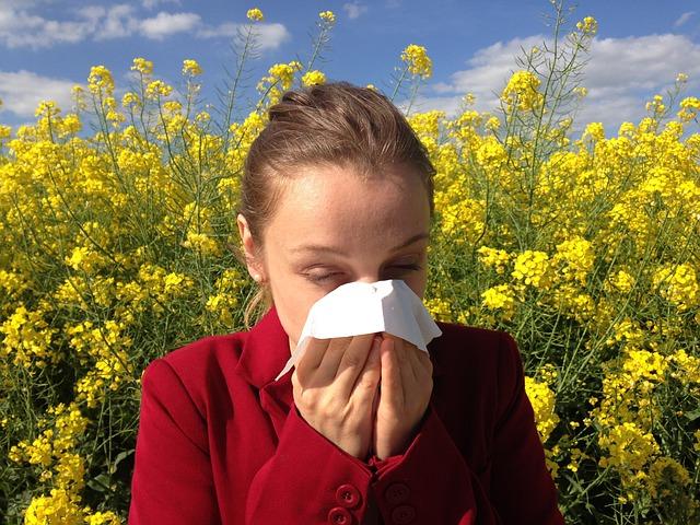 Pollen-allergia